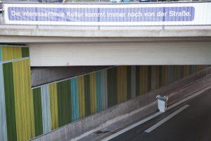 A40Stillleben_18072010_030_Foto_Guntram-Walter-300x200