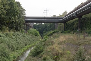 Duisburg_130830_020_Foto_Guntram-Walter-300x200