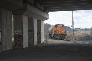 Waldteich-Gelaende_06042016_022_Foto_Guntram-Walter-300x200